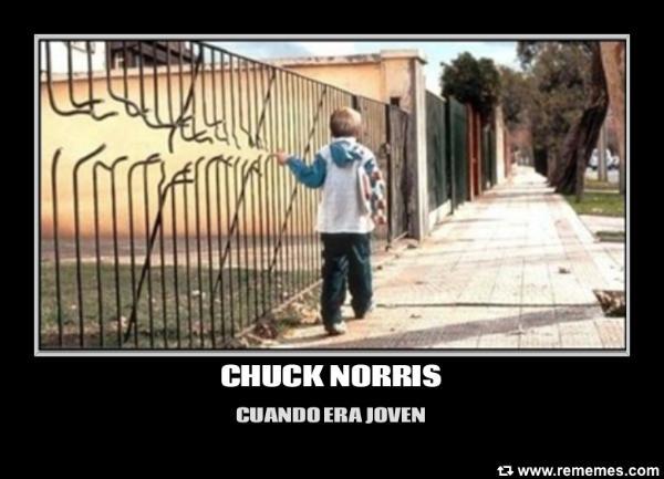 memes de chuck norris13