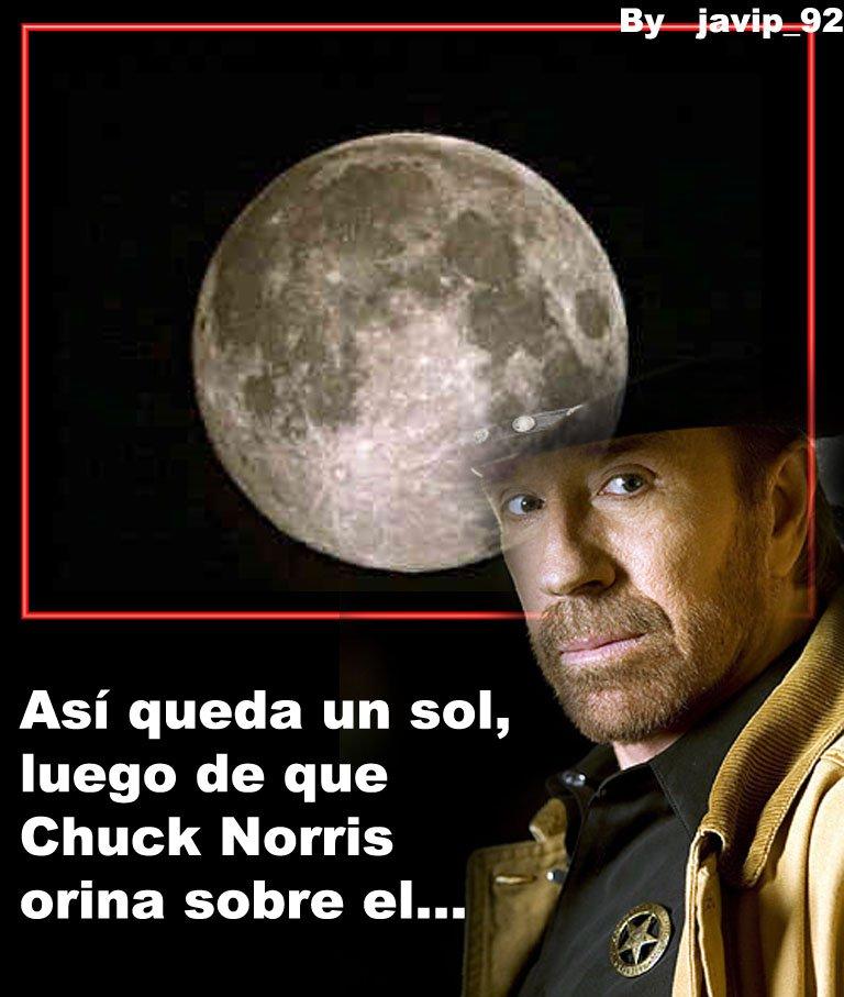 memes de chuck norris22