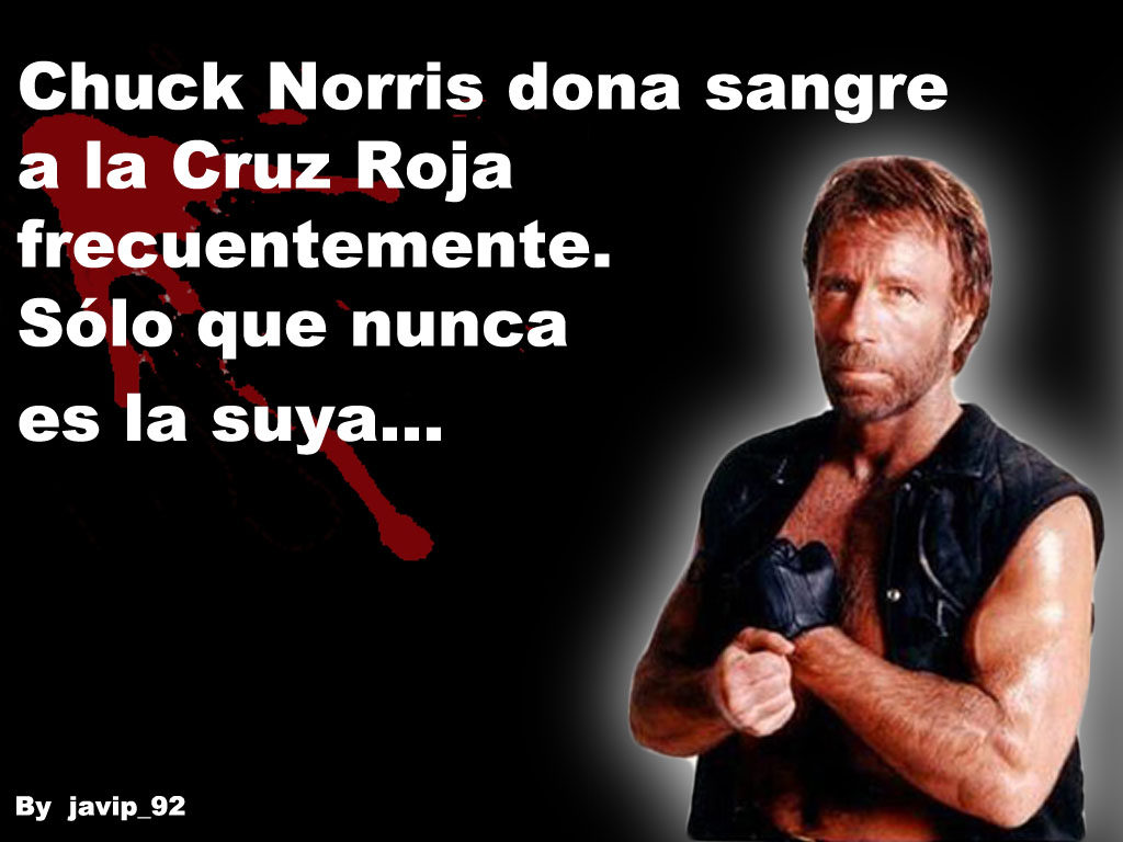 memes de chuck norris27