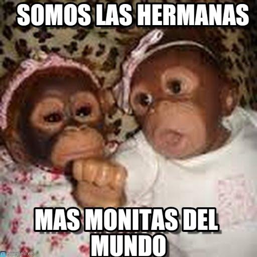 memes de hermanas35