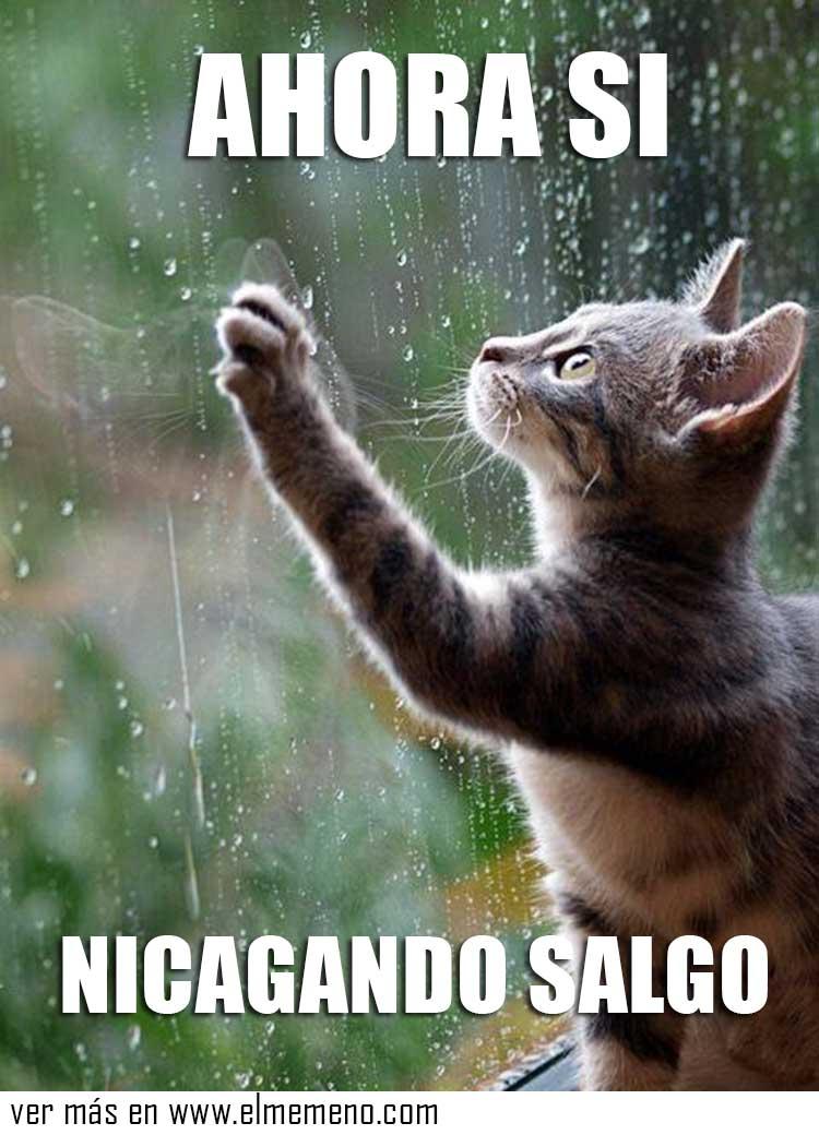 lluvia8 memes de lluvia10