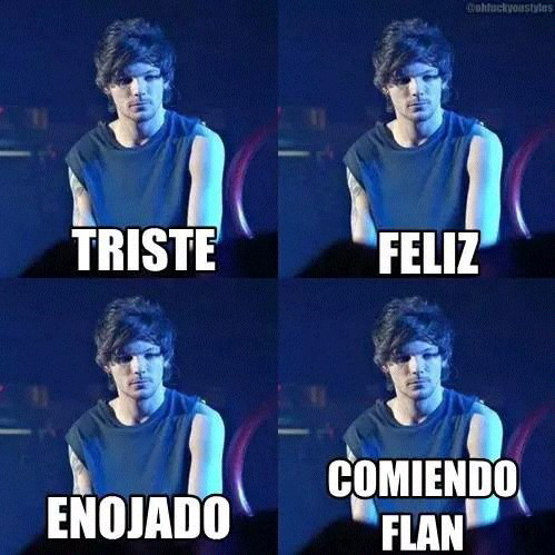 memes de one direction11