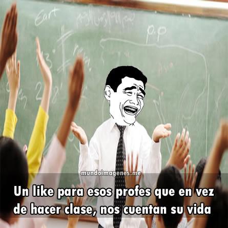 memes de profesores16