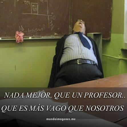 memes de profesores19
