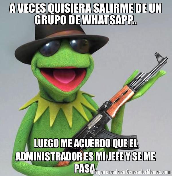 memes de administradores - rana rene
