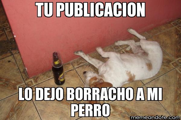 memes de amigos borrachos - perro borracho