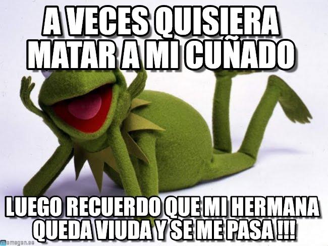 memes de cuñadas - aveces rana rene