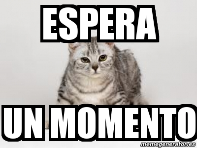 memes de espera - gato