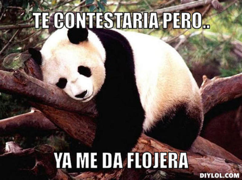 memes de flojera - panda con flojera