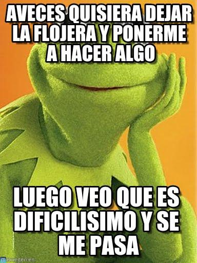 memes de flojera - rana rene