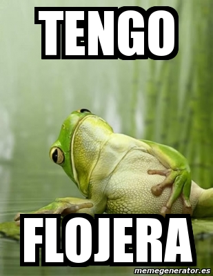 memes de flojera - tengo flojera rana
