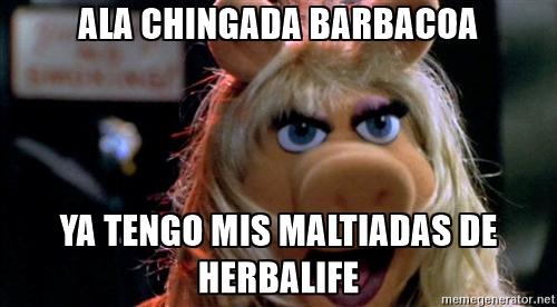 memes de herbalife - piggie