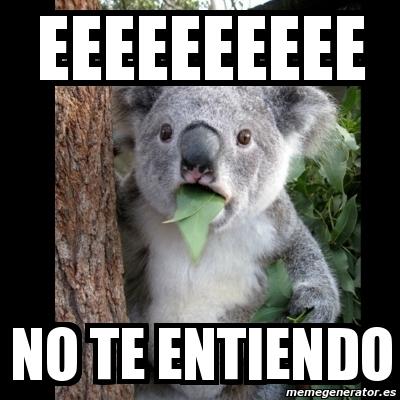 memes de no entiendo - koala
