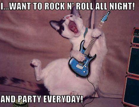memes de rockeros8