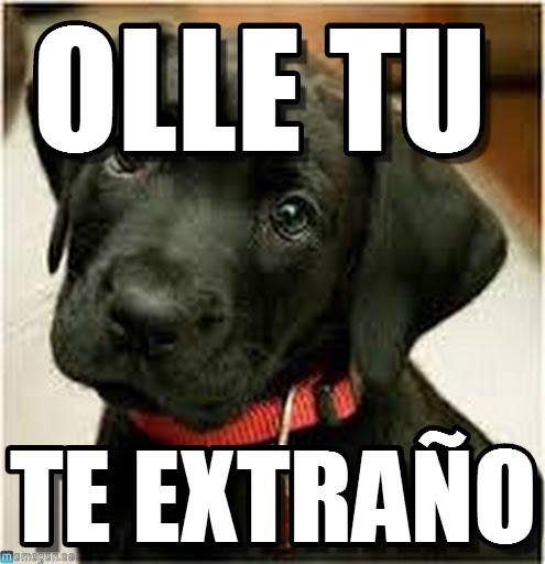 memes de tristeza - perrito tierno oye te extraño