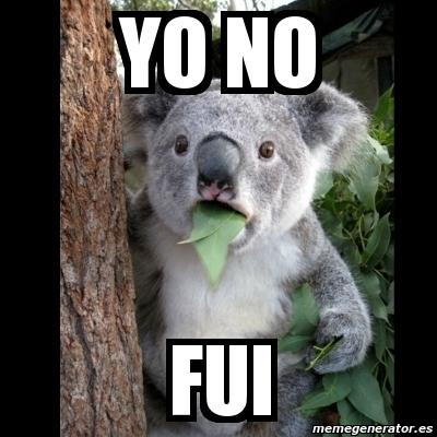 memes de yo no fui - koala