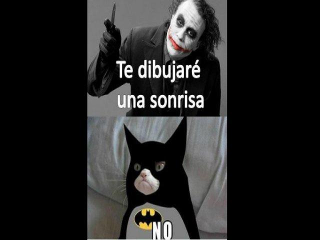 memes de batman - joker y grumpy cat