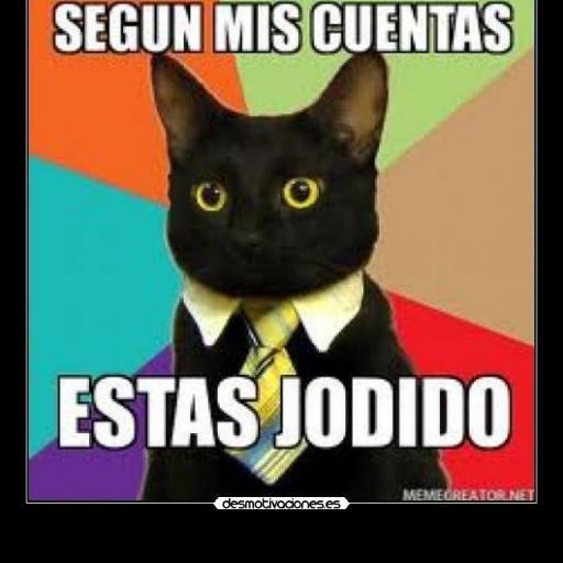 memes de contadores - gato negro