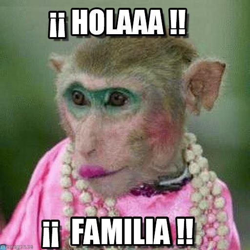 memes de familia - hola familia mona maquillada