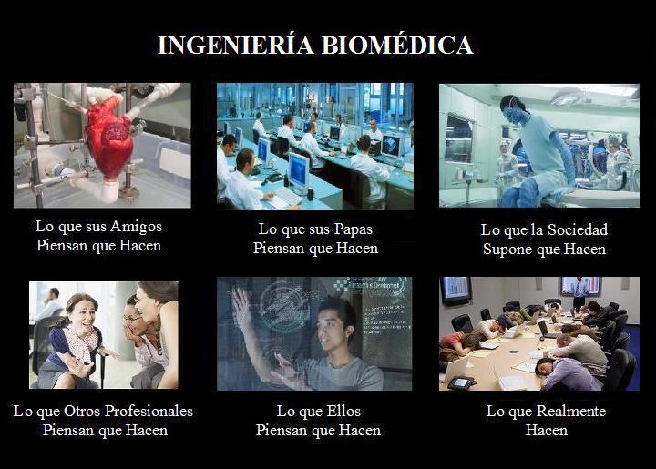 memes de ingenieros - biomedica ingeniero