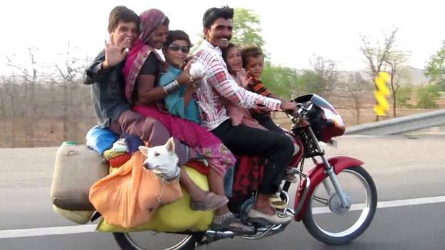 memes de motos - familia completa