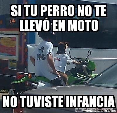 memes de motos - perro en moto