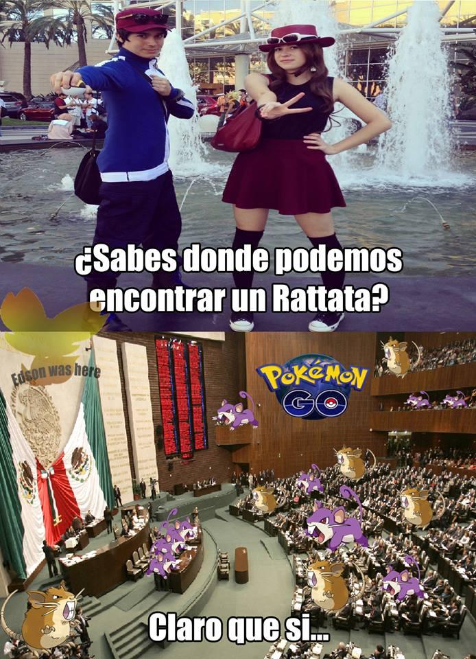 memes de pokemon go - donde encontrar un rattata