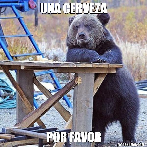 memes de osos - dameuna cerveza
