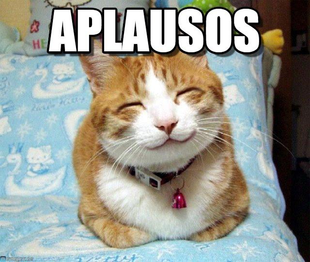 memes-de-aplausos-gato