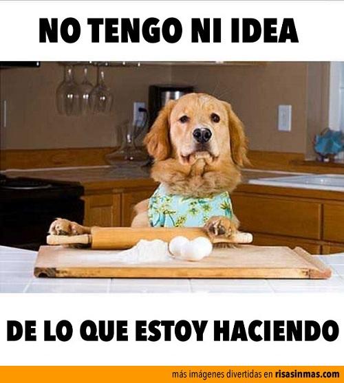 memes-de-cocineros-no-tengo-idea-de-que-hago