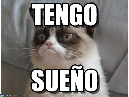 memes de tengo sueño - gato con sueno