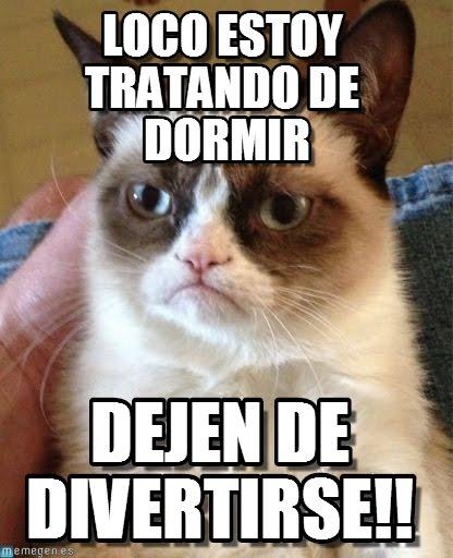 memes de tengo sueño - gato molesto