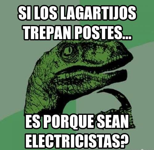 memes-de-electricistas-si-los-lagartijos