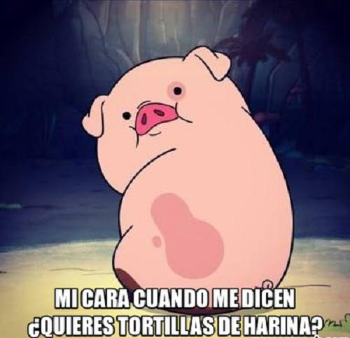 memes-de-tortillas-cuando-hay-tortillas-de-harina