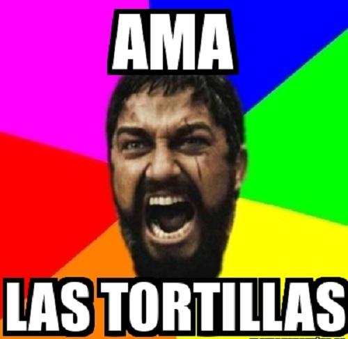 memes-de-tortillas-lionidas
