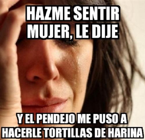 memes-de-tortillas-me-puso-a-hacer-torilas
