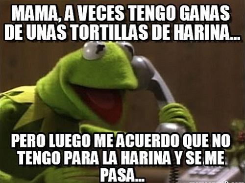 memes-de-tortillas-rana-rene