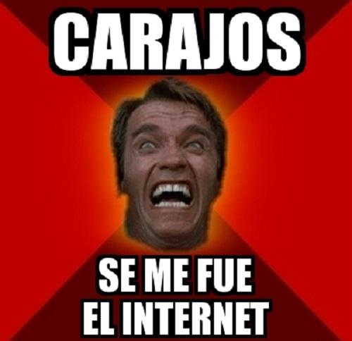 memes-de-se-me-fue-el-internet-arnold