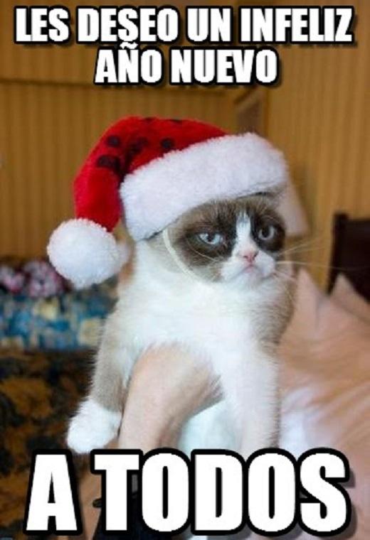 memes-de-fin-de-ano-gato-enojado-feliz-ano-nuev