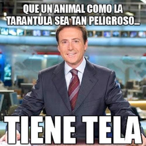 memes-de-noticias11