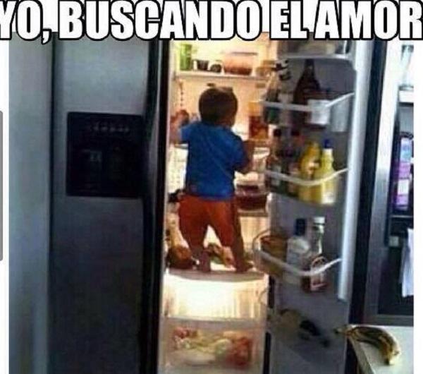 memes-de-yo-en-el-amor-buscando-el-amor-en-el-refrigerador