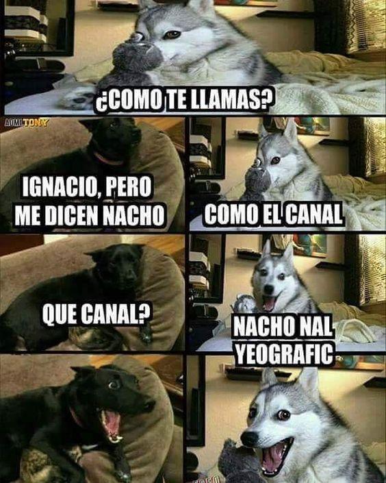 memes de humor4