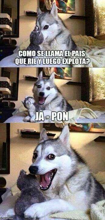 memes de humor7