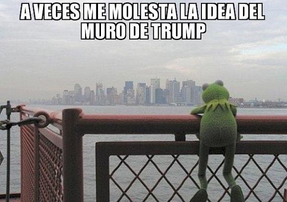 memes del muro - aveces