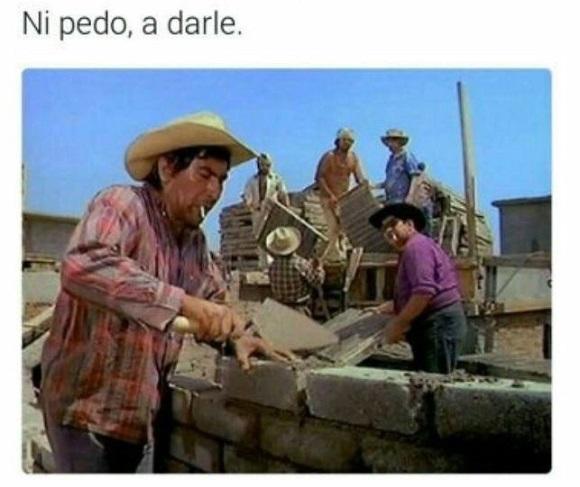 memes del muro - ni pedo pues