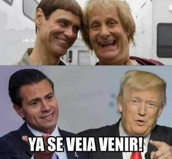 memes del muro - tondo y mas tonto